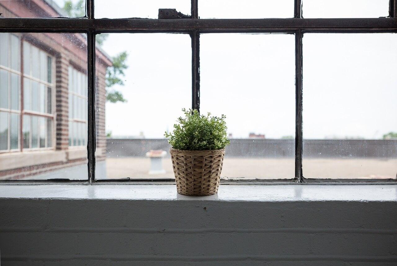 Lammoniaca è sicura per lavare vetri e pavimenti?